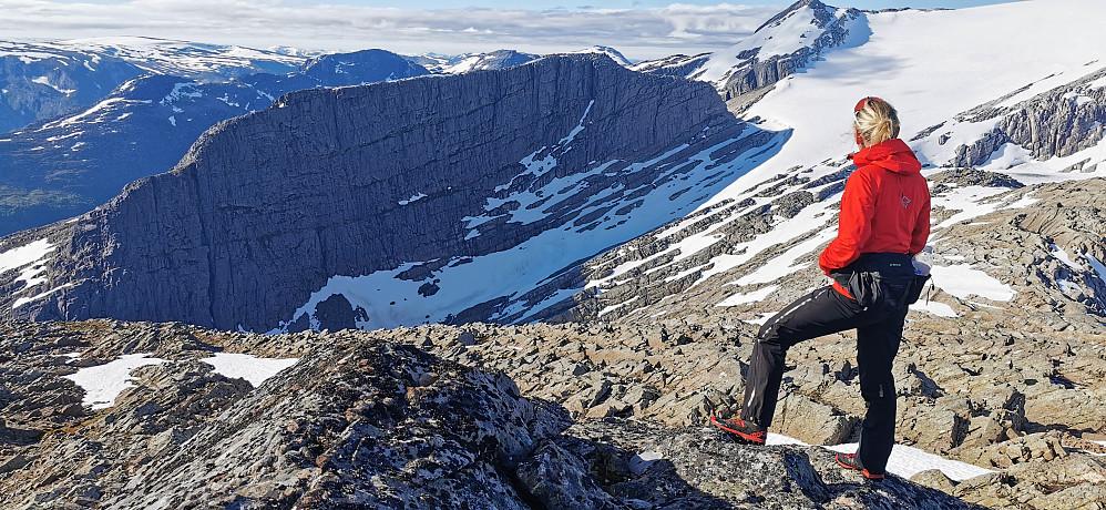Ifrå Skjerdingane sør for 1271 moh mot neste mål Svartevassnyken 1259 Den toppen eg såg mest fram til under turen.