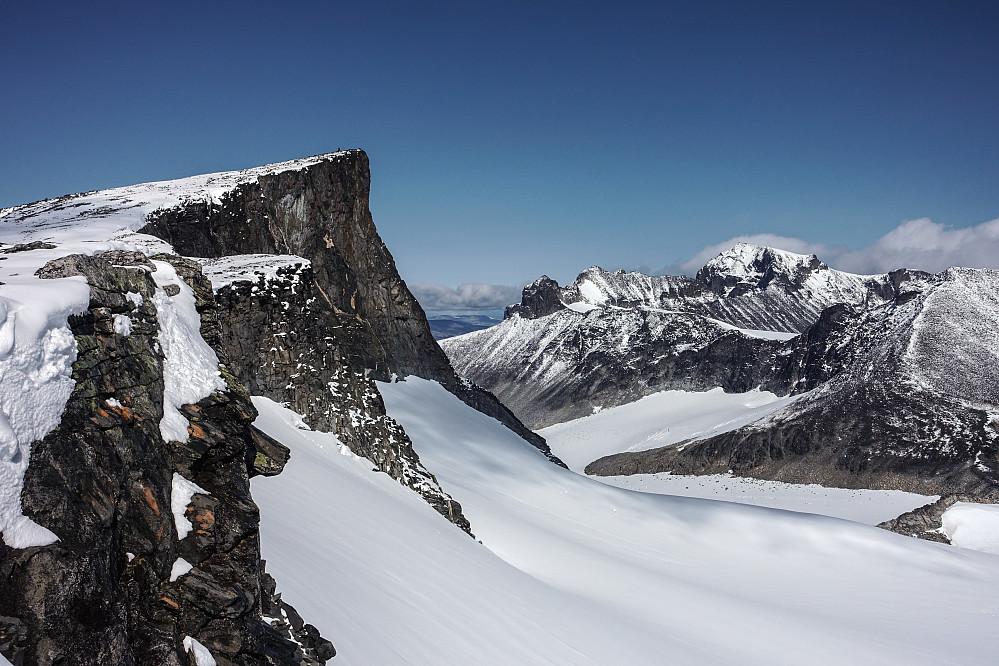 Straks ferdig med motbakkene for i dag. Bukkehøe til venstre, Galdhøpiggen i bakgrunnen til høyre.