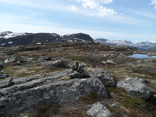 På Vesterdalsfjellet med Storenut i bakgrunnen.