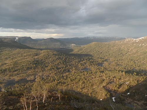 På veg ned austryggen av Tjørnnuten med utsyn over den skogkledde Vesterdalen.