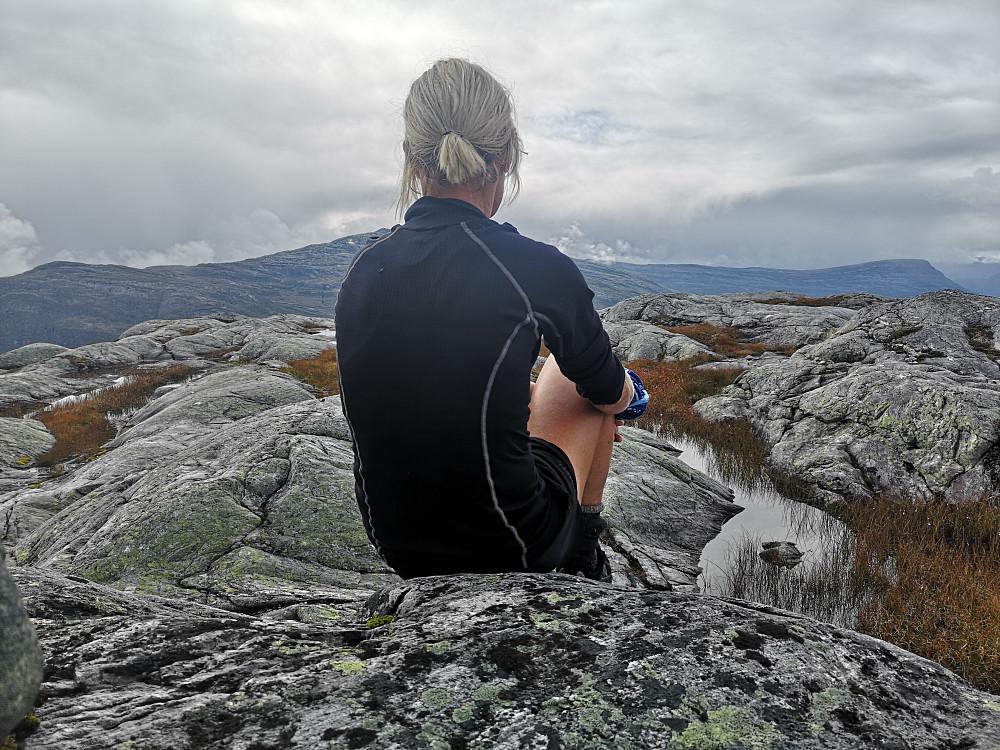 Utsikt fra Bleikegga mot Smylmedalsegga/Blånipa og Endestadnipa