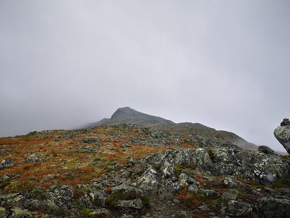 Får sikt og ser ryggen mot Skardsberget