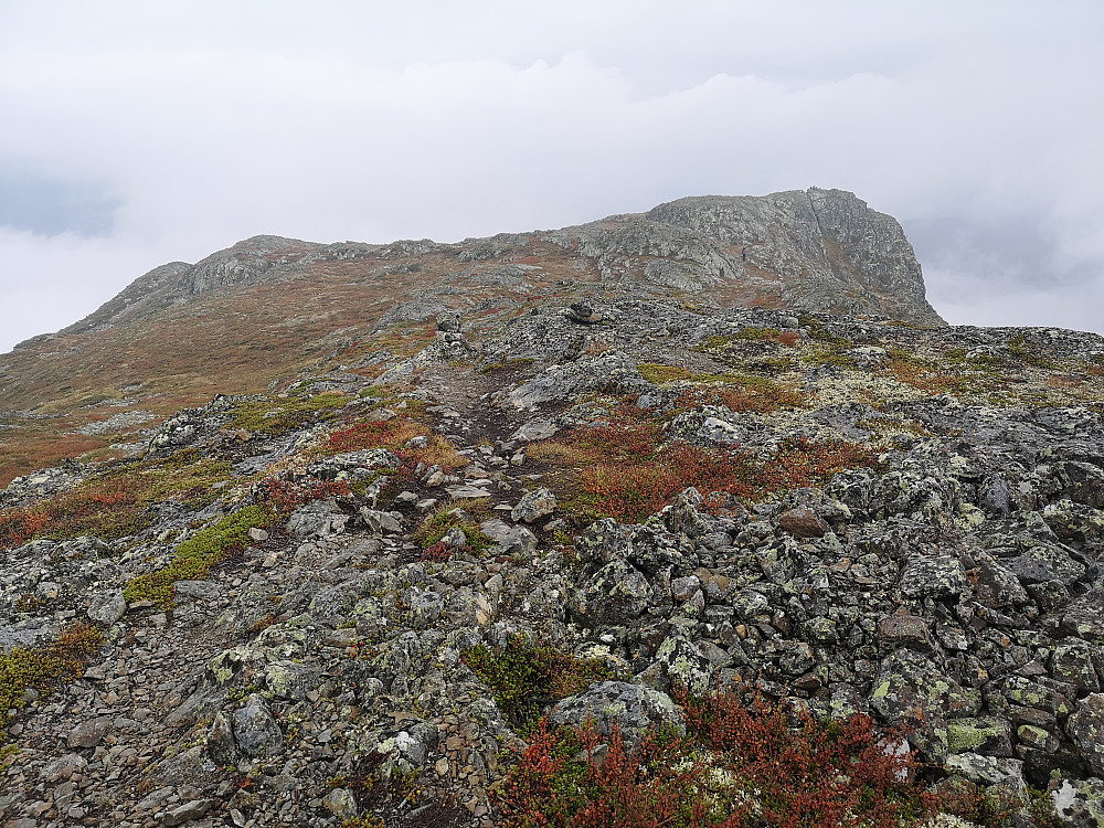 Tilbake over Skardsberget