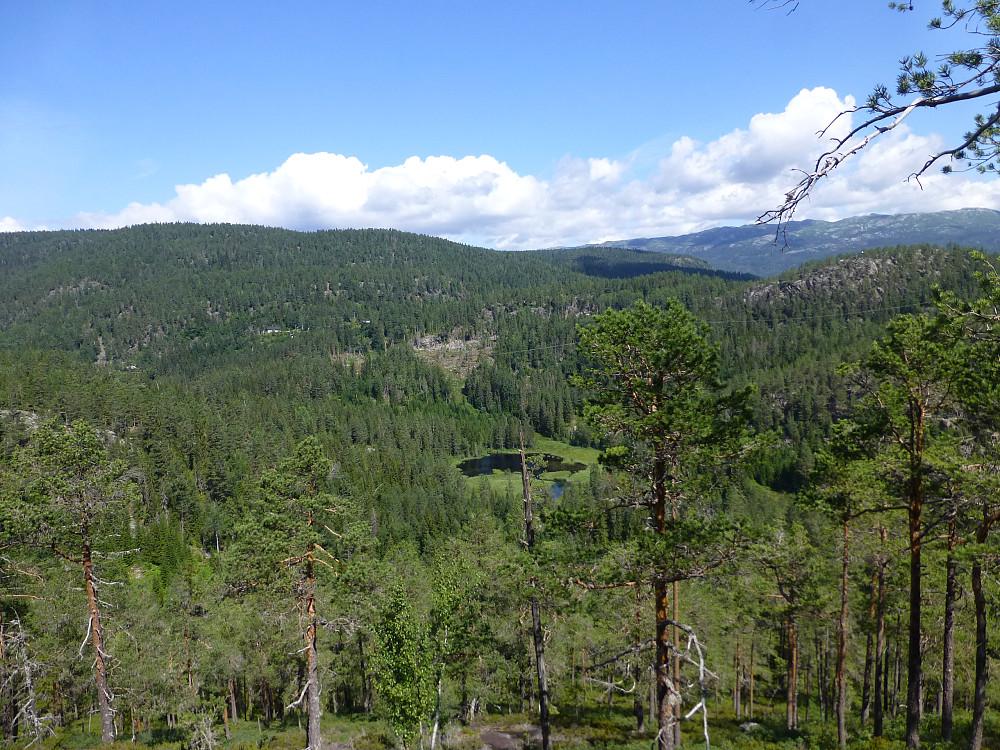 Utsikt fra lia opp mot toppen